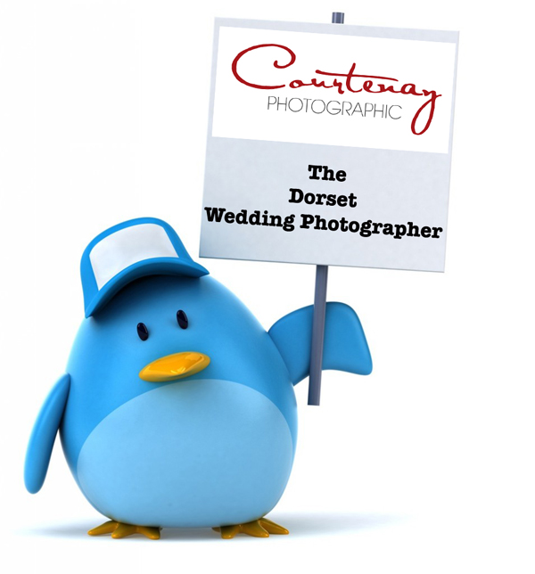 Wedding photographer dorset on twitter